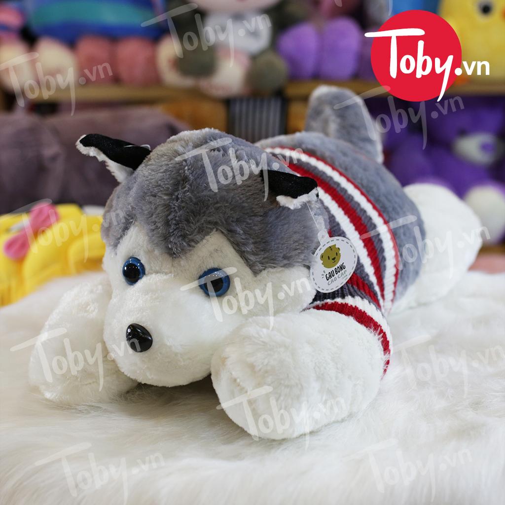 Chó Bông Husky - Chó Bông Alaska