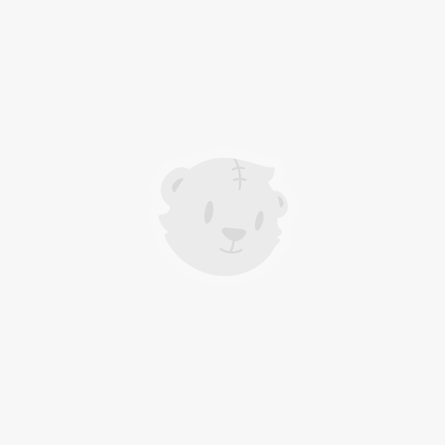 Gấu nâu Grizzly – We Bare Bear