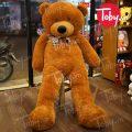 Gấu Teddy Boydz Khổng Lồ