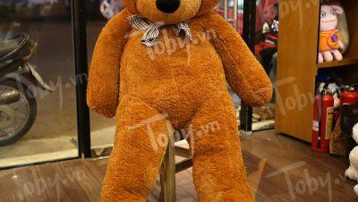Gấu Bông To – Gấu Bông Lớn – Món quà đặc biệt cho người thân yêu