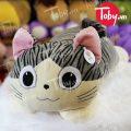 Mèo Bông Chii lông nhung mịn